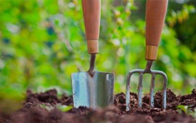 diseño web jardineria